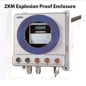 Delta Instrument ZKM Explosion Proof Enclosure